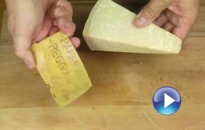 parmesan-play