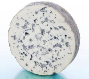 fromage-aop-fourme-ambert