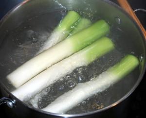 lauchstange-blanch