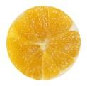 orange-a-vif2